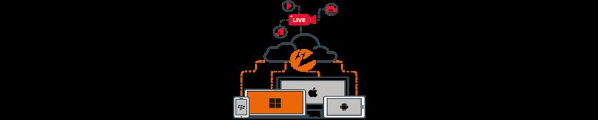 Content Delivery Network - Wer Braucht es?
